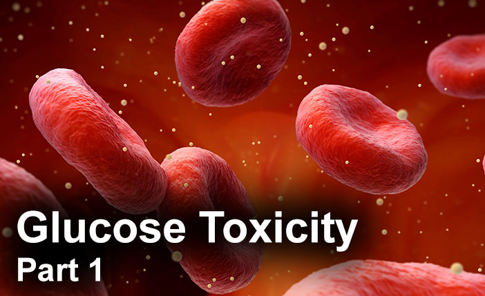 Glucose Toxicity – Part 1