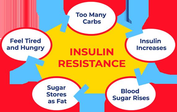 Lysulin Weight Loss Shake